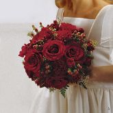 Red Bridal